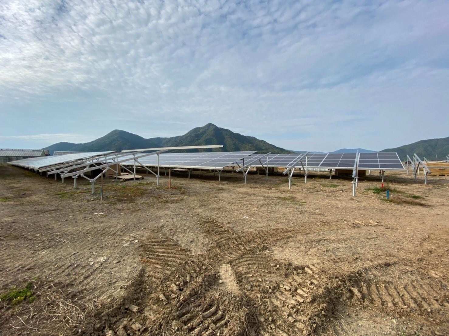 天草にて大規模な太陽光発電の工事を行なっております。